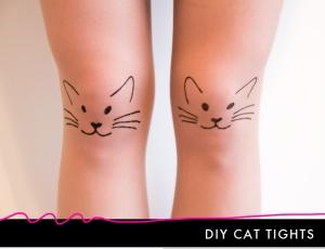 cat-steps