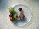 ציחמוקים מענבים - פעילות עם ילדים
